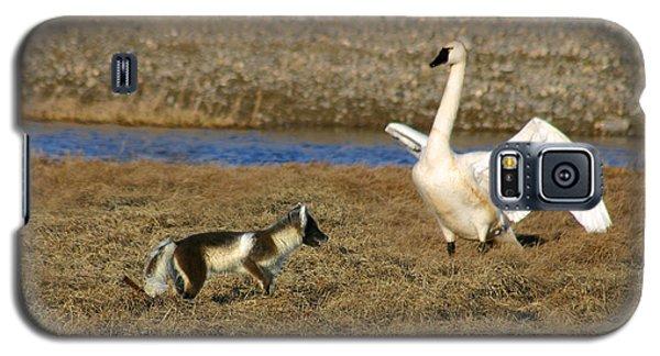 Fox Vs Swan Galaxy S5 Case