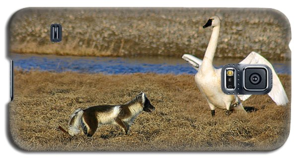 Fox Vs Tundra Swan Galaxy S5 Case