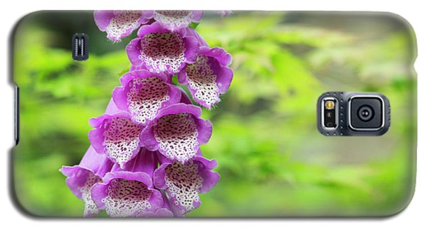 Galaxy S5 Case featuring the photograph Foxglove Flowering by Tim Gainey