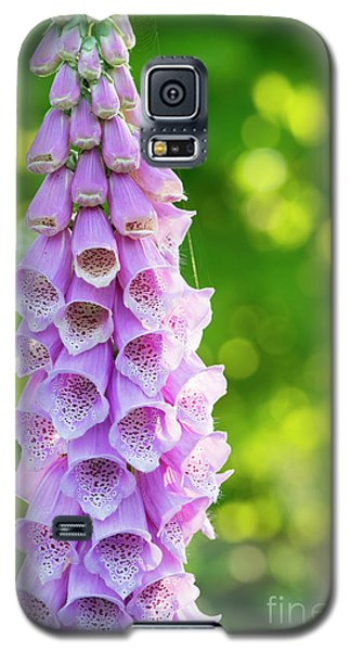 Galaxy S5 Case featuring the photograph Foxglove Light by Tim Gainey