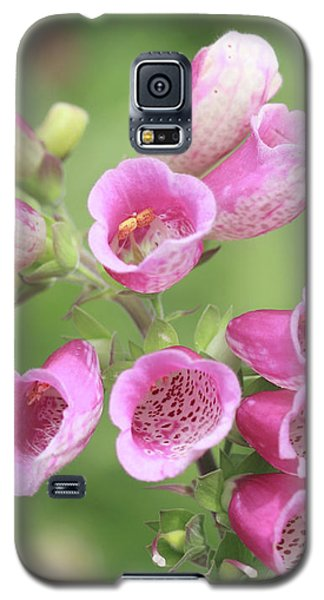 Foxgloves  Galaxy S5 Case