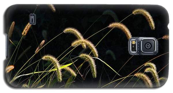 Foxtails Galaxy S5 Case