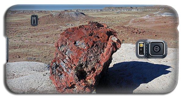 Galaxy S5 Case featuring the photograph Fragile Survivor by Gary Kaylor