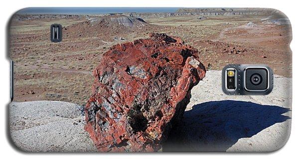 Fragile Survivor Galaxy S5 Case