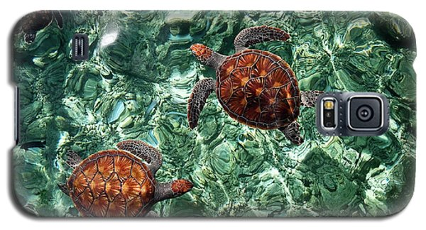 Fragile Underwater World. Sea Turtles In A Crystal Water. Maldives Galaxy S5 Case