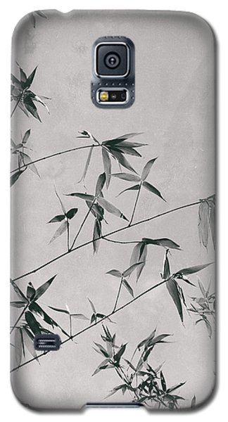 Galaxy S5 Case featuring the photograph Fragility And Strength by Linda Lees