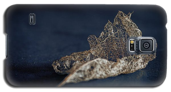 Galaxy S5 Case featuring the photograph Fragment by Tim Nichols
