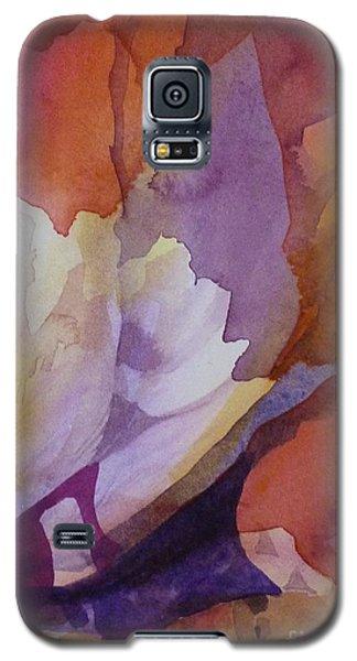Fragments Galaxy S5 Case by Donna Acheson-Juillet