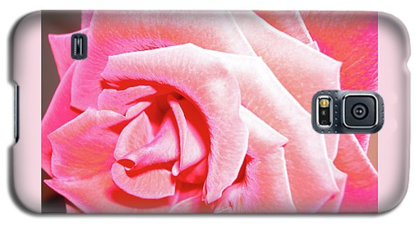 Galaxy S5 Case featuring the photograph Fragrant Rose by Marie Hicks