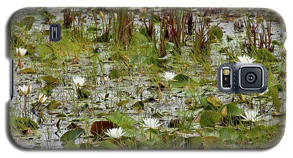 Galaxy S5 Case featuring the photograph Fragrant White by Susan Cole Kelly