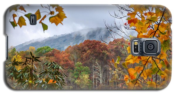 Framed By Fall Galaxy S5 Case by Kerri Farley