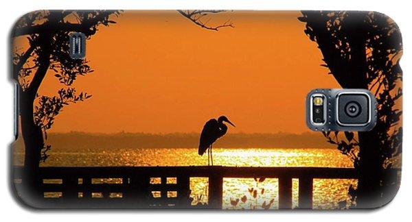Framed Great White Egret Galaxy S5 Case