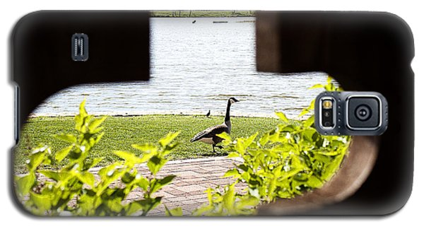 Framed Nature Galaxy S5 Case
