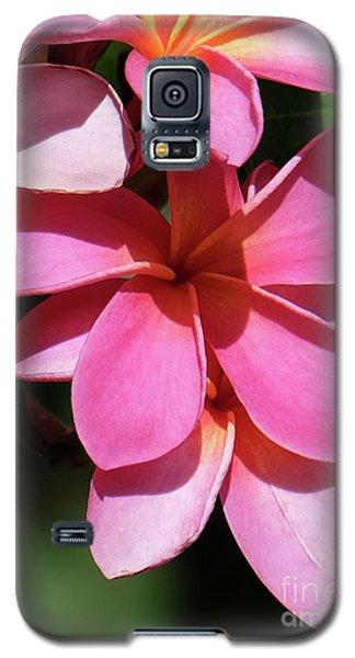 Frangipani Galaxy S5 Case by Mini Arora