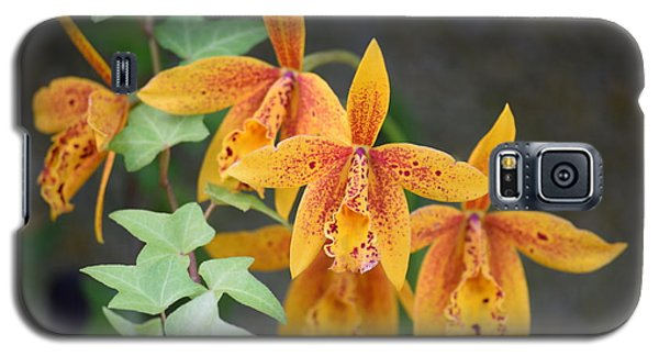 Galaxy S5 Case featuring the photograph Freckled Flora by Deborah  Crew-Johnson