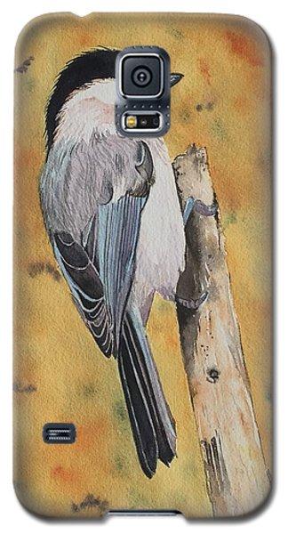 Free Bird Galaxy S5 Case