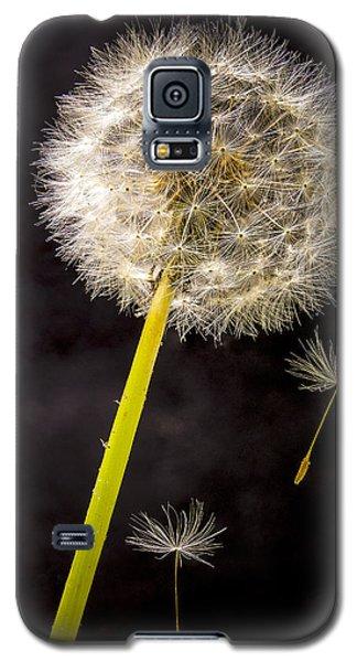 Free Fall Galaxy S5 Case