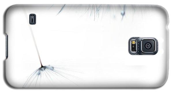 Free Fall Galaxy S5 Case by Rebecca Cozart