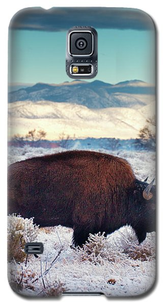 Free To Roam Galaxy S5 Case