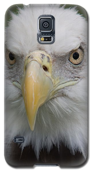 Freedom Eagle Galaxy S5 Case