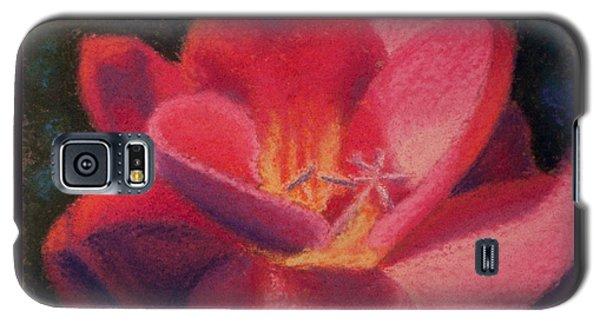 Freesia Dawn Galaxy S5 Case