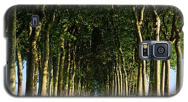 French Tree Lined Country Lane Galaxy S5 Case