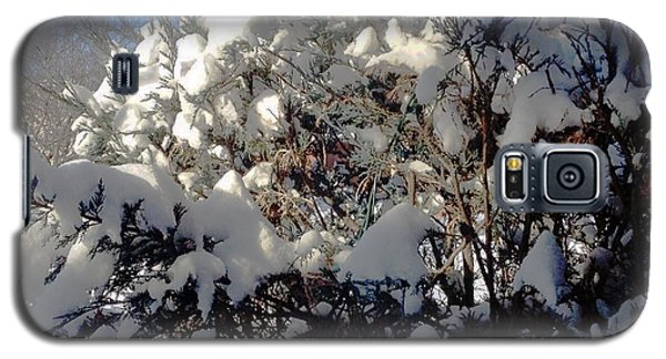 Fresc Snow Galaxy S5 Case