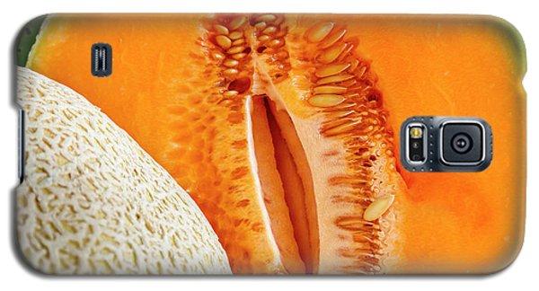 Fresh Cantaloupe Melon Galaxy S5 Case
