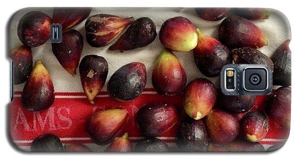 Fresh Figs Galaxy S5 Case