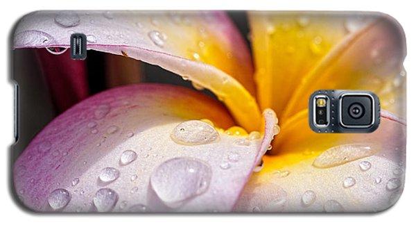 Fresh Flower Galaxy S5 Case