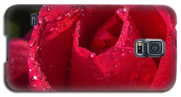 Fresh Rose Galaxy S5 Case