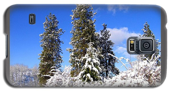 Galaxy S5 Case featuring the photograph Fresh Winter Solitude by Will Borden