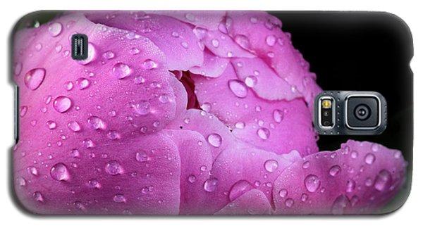 Freshly Rinsed Galaxy S5 Case