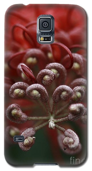 Galaxy S5 Case featuring the photograph Friendly Foe by Stephen Mitchell