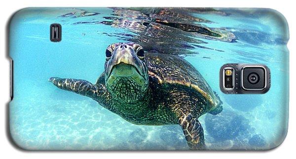 friendly Hawaiian sea turtle  Galaxy S5 Case