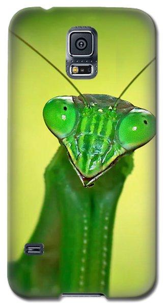 Friendly Mantis Galaxy S5 Case
