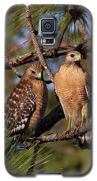 Friendly Raptors Galaxy S5 Case
