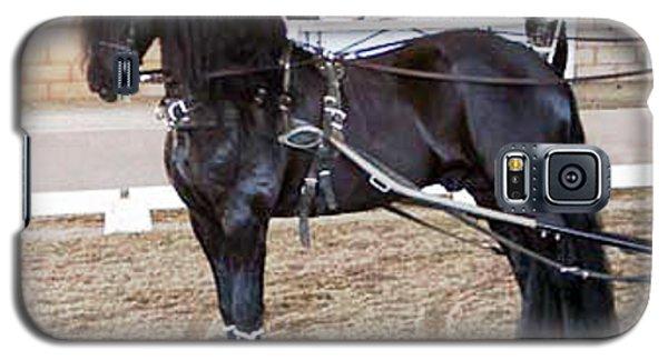 Friesian Stallion Under Harness Galaxy S5 Case
