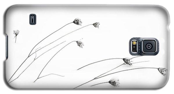 Frigid Galaxy S5 Case