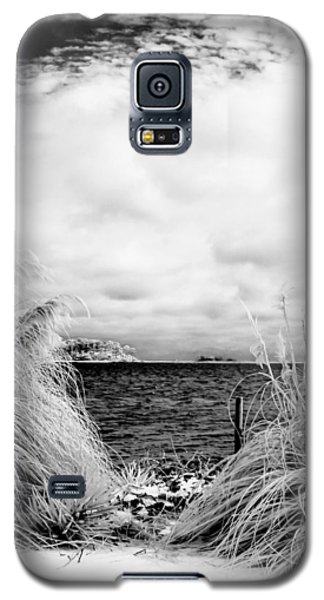 Frigid Shore Galaxy S5 Case