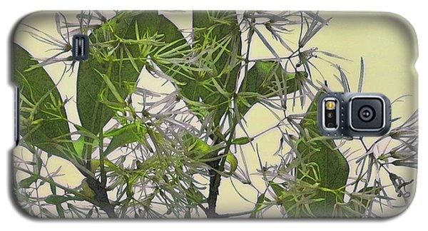 Fringe Tree Galaxy S5 Case by David Klaboe