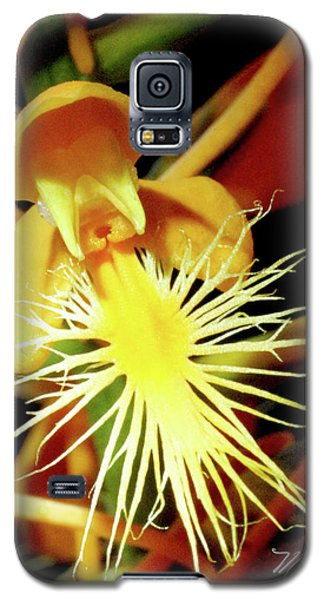 Fringed Yellow Orchid Galaxy S5 Case