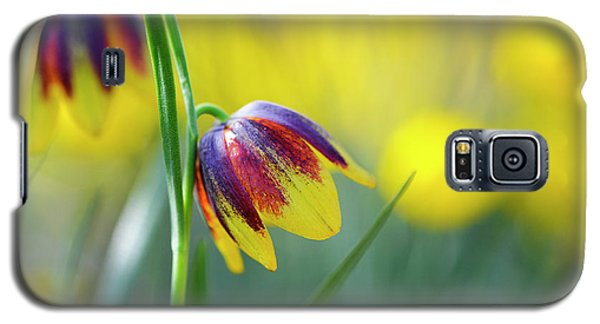 Galaxy S5 Case featuring the photograph Fritillaria Reuteri by Tim Gainey