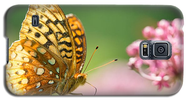 Fritillary Galaxy S5 Case