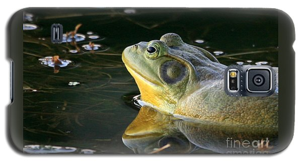 Frog At Sunset Galaxy S5 Case by Paula Guttilla