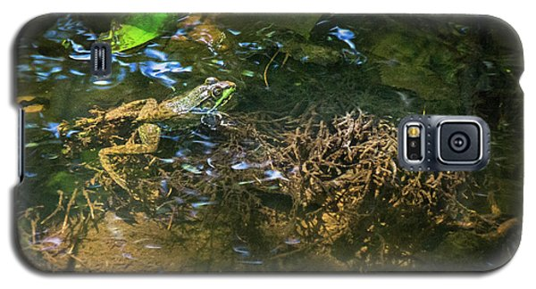Galaxy S5 Case featuring the photograph Frog Days Of Summer by Bill Pevlor