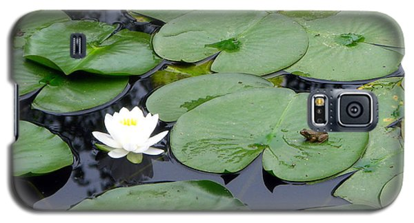 Frog On Lily Pad Galaxy S5 Case by George Jones