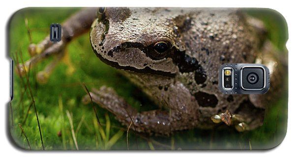 Galaxy S5 Case featuring the photograph Frog On The Grass by Jean Noren