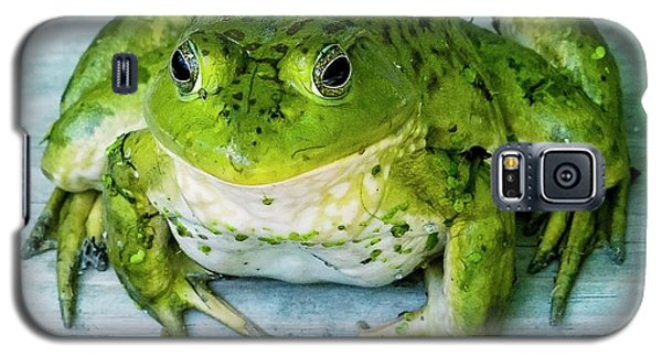 Frog Portrait Galaxy S5 Case