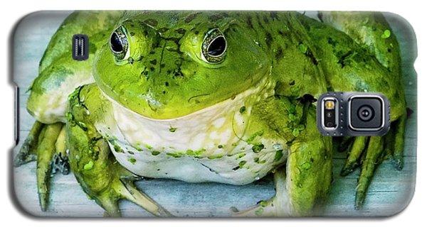 Frog Portrait Galaxy S5 Case by Edward Peterson